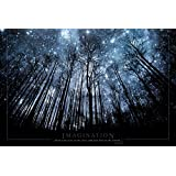 Imagination Keep Your Eyes on the Stars and Your Feet on the Ground Art Print Poster