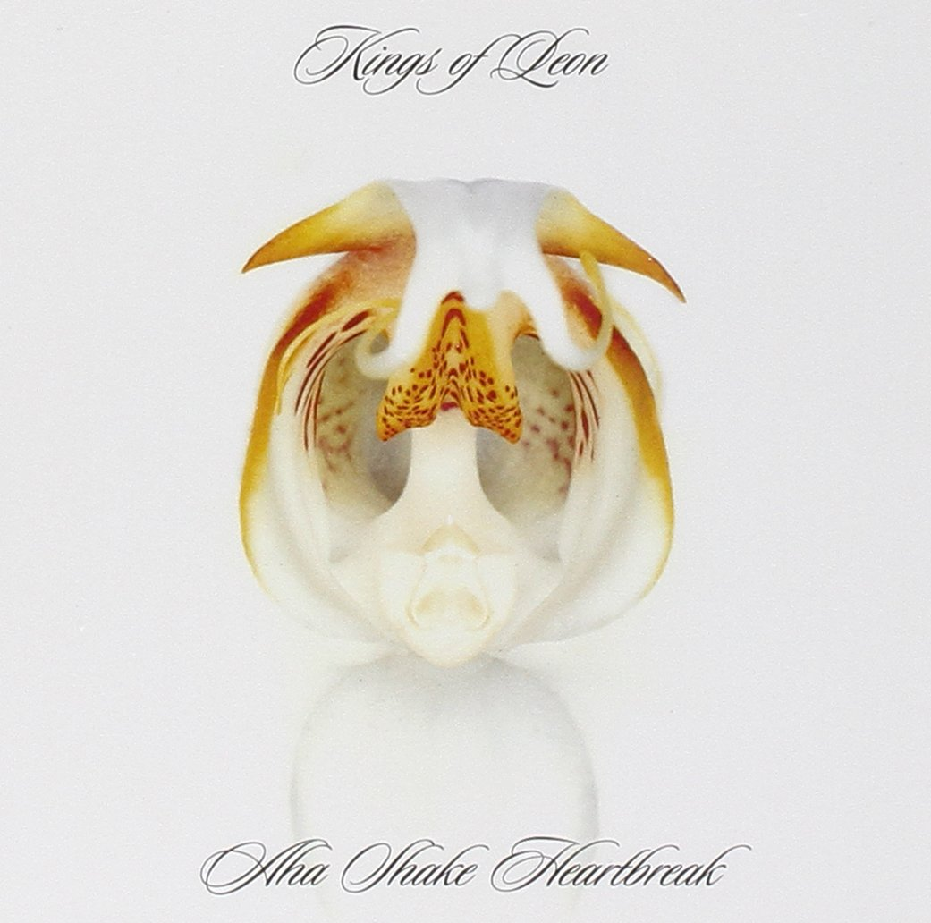 Kings of leon milk free download