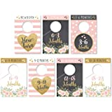 7 Pink Gold Baby Nursery Closet Organizer Dividers For Girl Clothing, Floral Age Size Hanger Organization For Kid…
