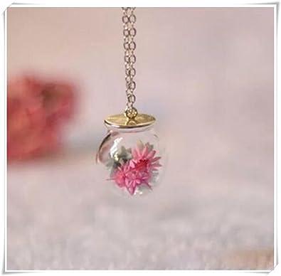 Real flores globo botella colgante, collar de jardín, botella de cristal colgante, collar