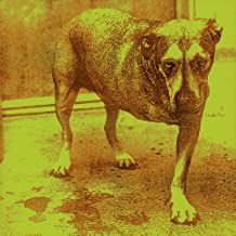 Alice In Chains [Explicit]