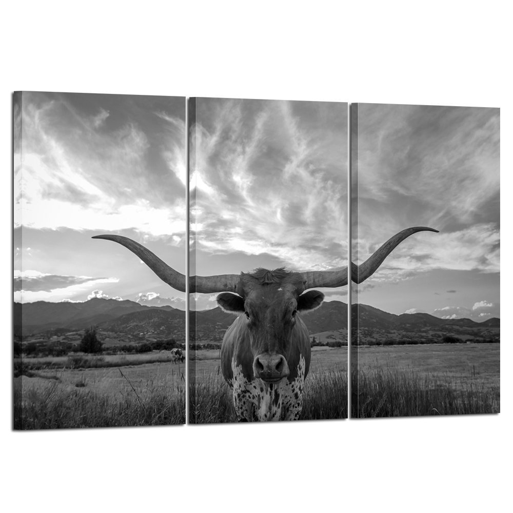 Kreative Arts - Large Modern Canvas Wall Art for Home and Office Decoration Animal Pictures Print Art on Canvas Texas Longhorn Canvas Prints Giclee Artwork for Wall Decor 16x32inchx3pcs