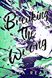 Breaking the Wrong (Sloan Brothers Series Book 2)