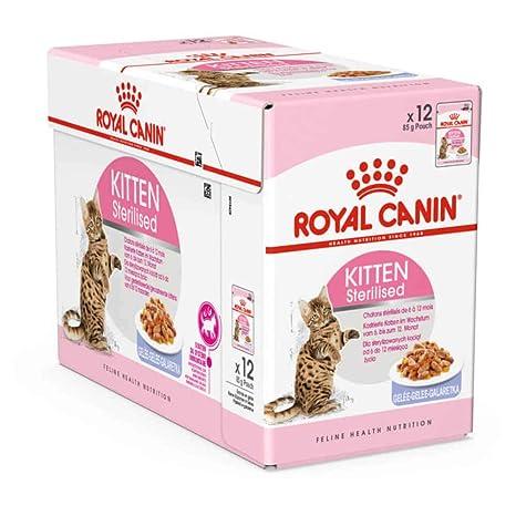 ROYAL CANIN Kitten Sterilised (gelatina) 85gr