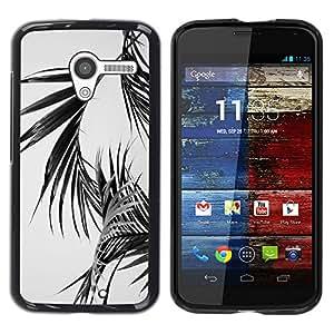 Motorola Moto X 1 1st GEN I , JackGot - Colorful peau Imprimé protection dur Retour Housse Shell (Noir Blanc feuilles de palmier Miami Tropics)