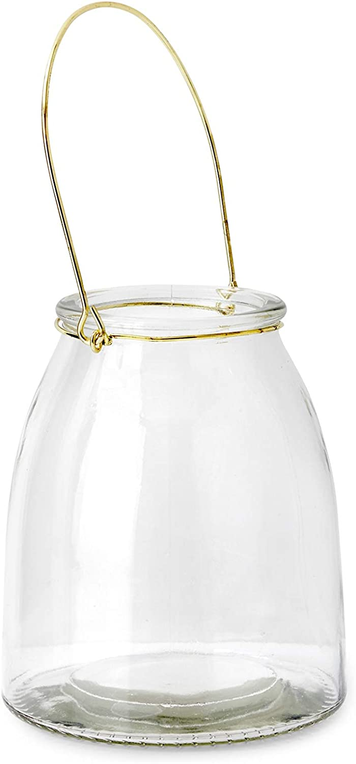 Serene Spaces Living Hanging Glass Jar for Wedding, Parties, Events, Patio, Use as Hanging Glass Lamp or for Flowers, Measures 6