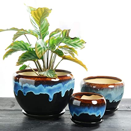 Amazon com : Minmin-huapen 3 Sets of Ceramic pots, Green Plants