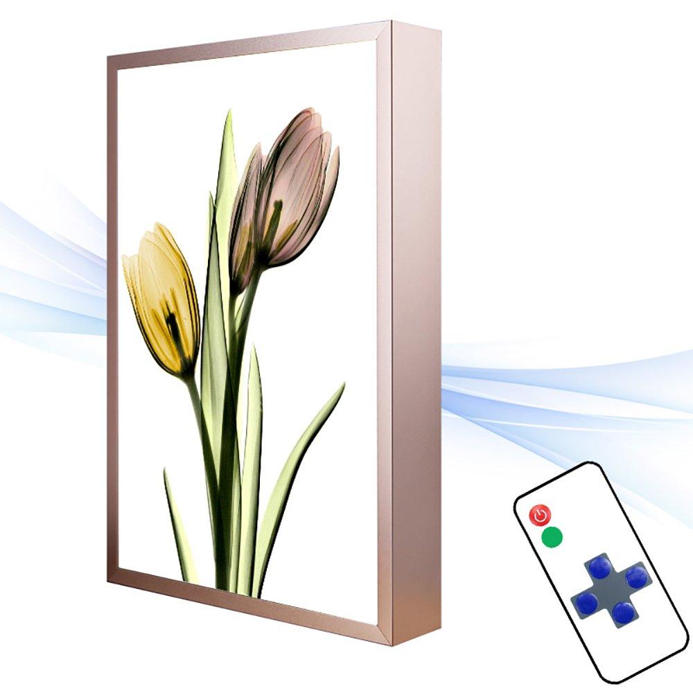 Wandleuchten Wandleuchte Aluminium PVC Schlafzimmer Nachttischlampe Wohnzimmer Treppen Gang Europäischen LED-Wandleuchten (2 Größen erhältlich) Scheinwerfer (Farbe   D-30  40  4CM)