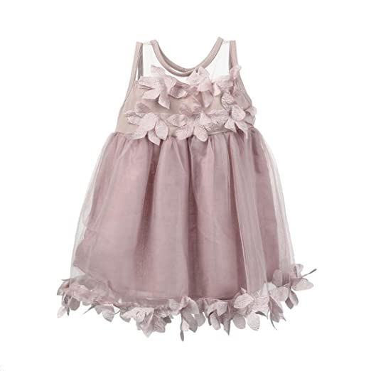 45ac979424d Children Baby Girls Sleeveless Lace Floral Appliques Tutu Mesh Dresses Party  Wedding Princess Dress (Pink