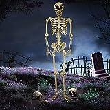 Halloween Haunters Giant 7 Foot Hanging Full Body Skeleton Plastic Prop Decoration - Posable Joints, Realistic Human Bones, Scary Skull