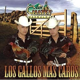 Amazon.com: Epoca de Oro (Album Version): Los Cuates De Sinaloa: MP3