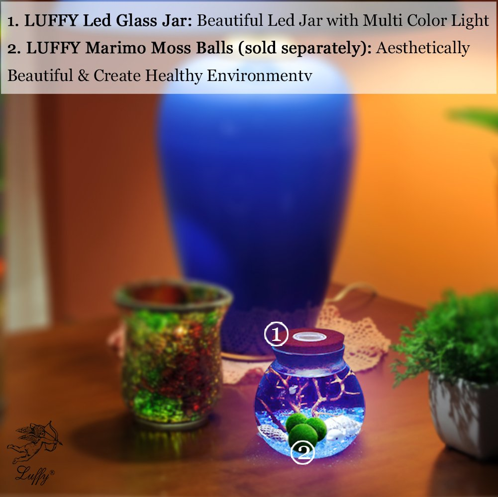 LED Glass Jar by Luffy - Automatic Multi Colored Light - Thick Durable Glass- Great for Creative Corner Decor, in Your Home or Garden - Make Original DIY Gifts - Use as Beautiful Night lamp for Kids