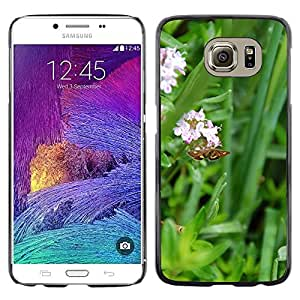 Etui Housse Coque de Protection Cover Rigide pour // M00133808 Insecto Mariposa del jardín de flores // Samsung Galaxy S6 (Not Fits S6 EDGE)