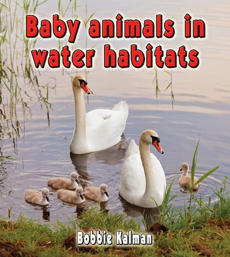 Download Baby Animals in Water Habitats (Habitats of Baby Animals) PDF