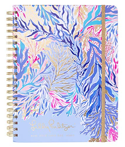 Where to find calendar planner jumbo size 2018-2019?