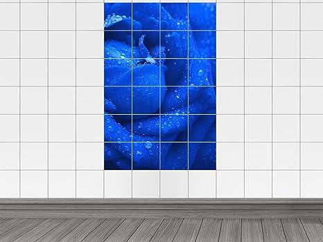 Piastrelle adesivo piastrelle immagine rose di colore blu con