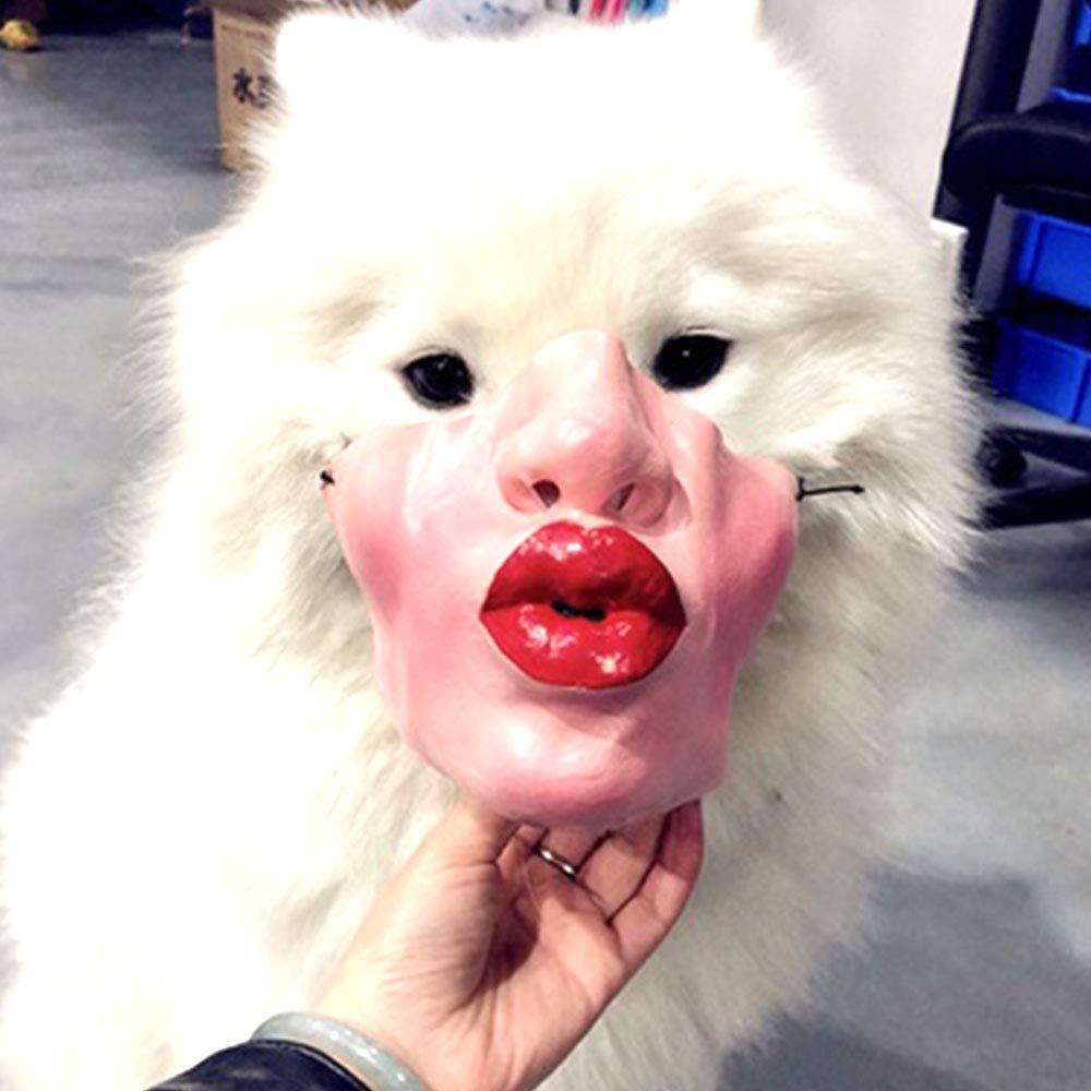 Aprettysunny Máscara Mascota Perro Enmascarado Durable 8 Estilo Código Uniforme Broma Broma Pet Bite Stop: Amazon.es: Productos para mascotas