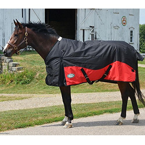 Midweight Turnout Horse (Glacier 1200D Midweight Turnout Blanket)