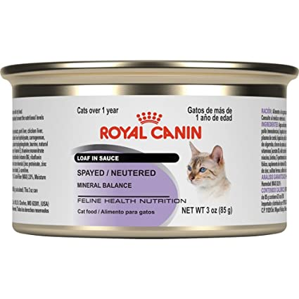 Royal Canin Feline Health Nutrition Spayed/Neutered Loaf in Sauce Canned Cat Food, 3