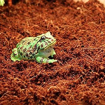 Small Granule 1.0-2.0mm SL-Aqua Nature Soil Aquarium Substrate For Freshwater Dwarf Shrimp