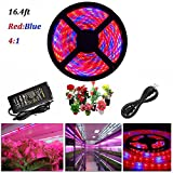 Cheap ABelle LED Strip Light Plant Grow Lights 16.4ft 5050 SMD Waterproof Full Spectrum Red Blue 4:1 Growing Lamp for Aquarium Greenhouse Hydroponic Plant Garden Flowers (5 M)