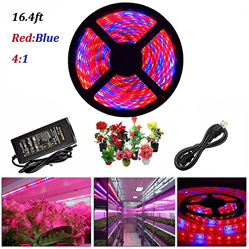 ABelle LED Strip Light Plant Grow Lights 16.4ft 5050 SMD Waterproof Full Spectrum Red Blue 4:1 Growing Lamp for Aquarium Greenhouse Hydroponic Plant Garden Flowers (5 M) (Red Led Blue Plant)