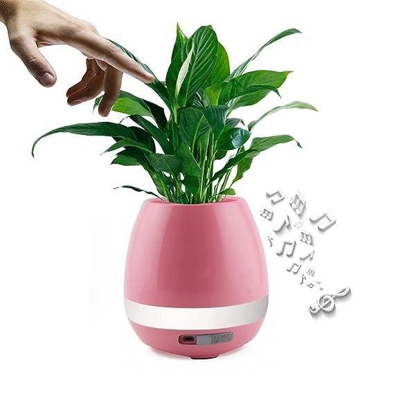 Nueva Disign Bluetooth altavoz luz de noche LED inteligente colorido música Touch de maceta Planta Piano Música creativa altavoz inalámbrico (sin plantas): ...