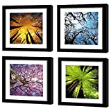 MOCO ART-Canvas Wall Art Painting Color Purple Trees Landscape Picture Prints on Canvas Artwork Framed Ready to Hang for Living Room Home Decor (Four Season Tree with Black Frame(30x30cmx4pcs))