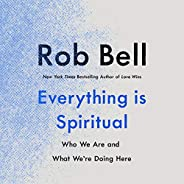 Everything Is Spiritual: Who We Are and What We're Doing