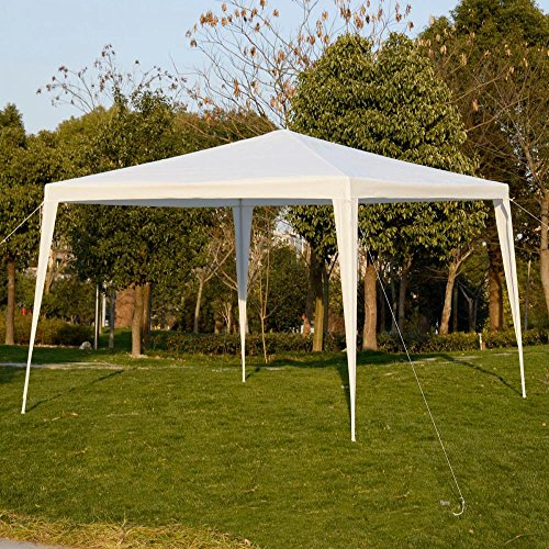 10'x10'Outdoor Canopy Party Wedding Tent Garden Gazebo Pavil