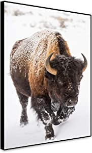 Renaiss 16x20 Inches Western Wildlife Bison Buffalo Canvas Wall Art Buffalo Wildlife Animal Wall Decor Art Print Poster Bison in The Snow Picture Artwork Painting for Living Room Wall Decor Framed