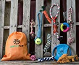 EarthyPaw 12 Pcs Dog Rope Play Set for Small to Medium Sized Dogs Review