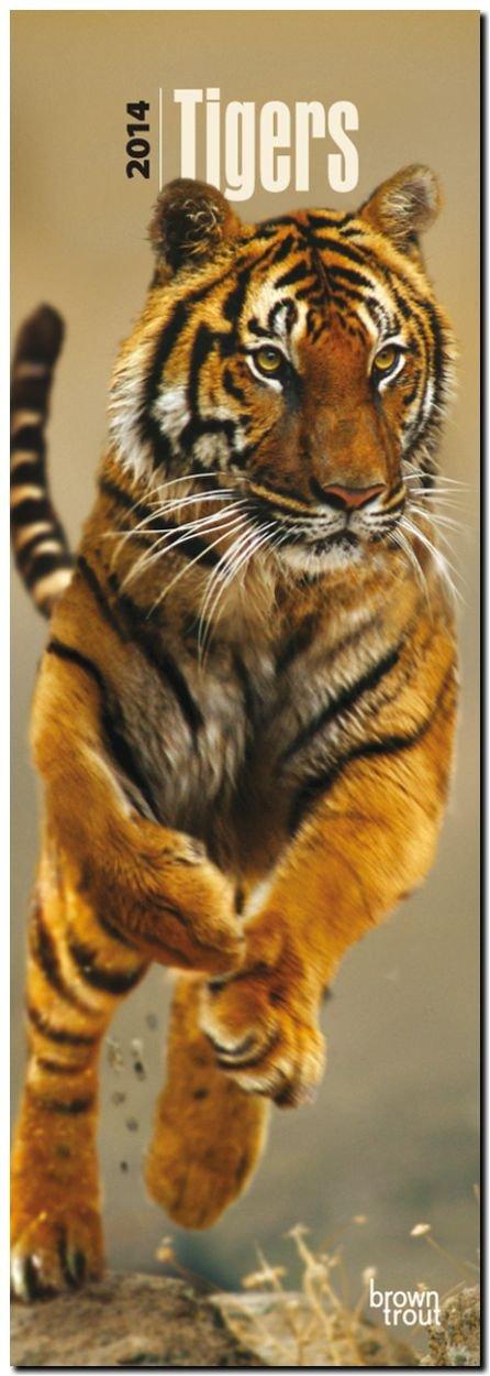 Tigers 2014 - Tiger: Original BrownTrout-Kalender - Slimline [Mehrsprachig] [Kalender]