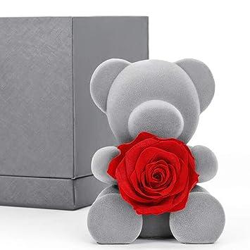 ANLW Día de San Valentín Regalo Flor eterna Rosa Oso muñeca ...