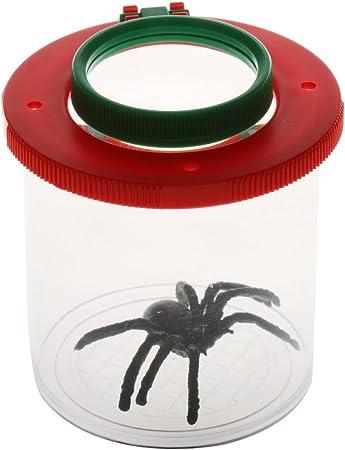 Caja de Aumento Insectos Entomólogos Juguete Lente Visor de ...
