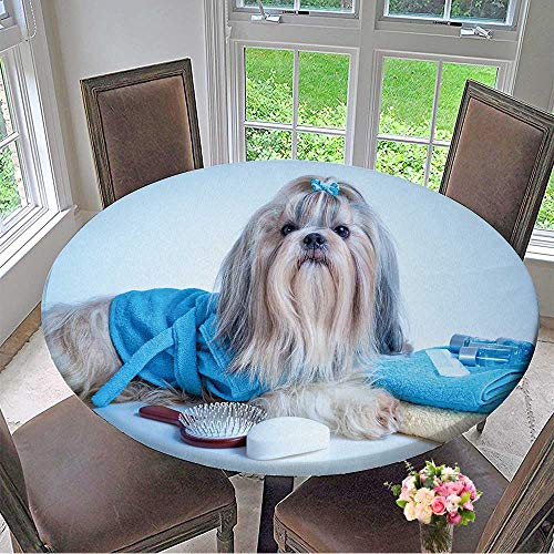 Mikihome Modern Table Cloth Shih tzu Dog After Washing with Bathrobe,Towels and Comb Soft Blue Background Tint Indoor or Outdoor Parties 47.5