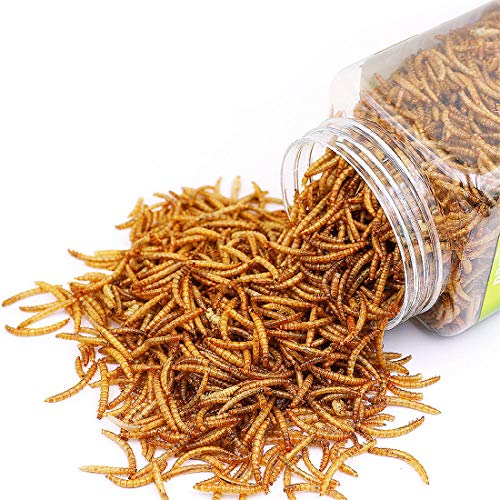 Sequoia Reptile Food Dried Mealworms Pet Worms Food for Bearded Dragon, Lizard, Turtles, Chameleon, Monitor, Frog, Sugar Glider, Chickens, Ducks, Wild Birds, Fish, Hamsters and Hedgehogs