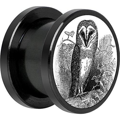 Cuerpo Caramelo Negro Anodizado Acero Inoxidable Monocromo Búho Ajuste Tornillo Doble Borde Bujía Par 20mm: Amazon.es: Joyería