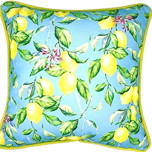 Sea by Day Outdoor Decorative Throw Pillow for Patio Furniture Weather Resistant 20x20 (Sky High Lemons)