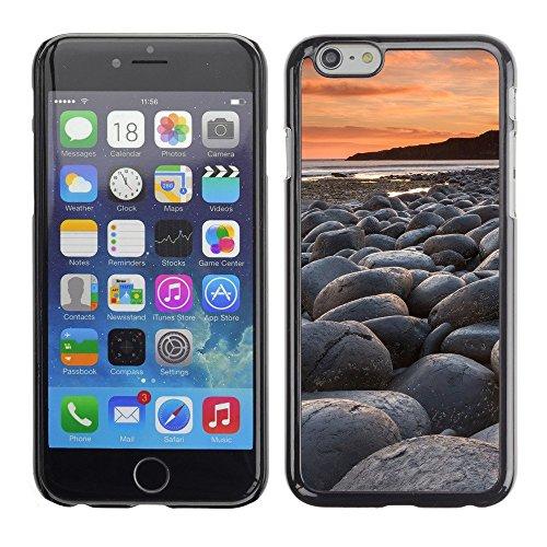 "Premio Sottile Slim Cassa Custodia Case Cover Shell // F00004005 oiseau // Apple iPhone 6 6S 6G 4.7"""