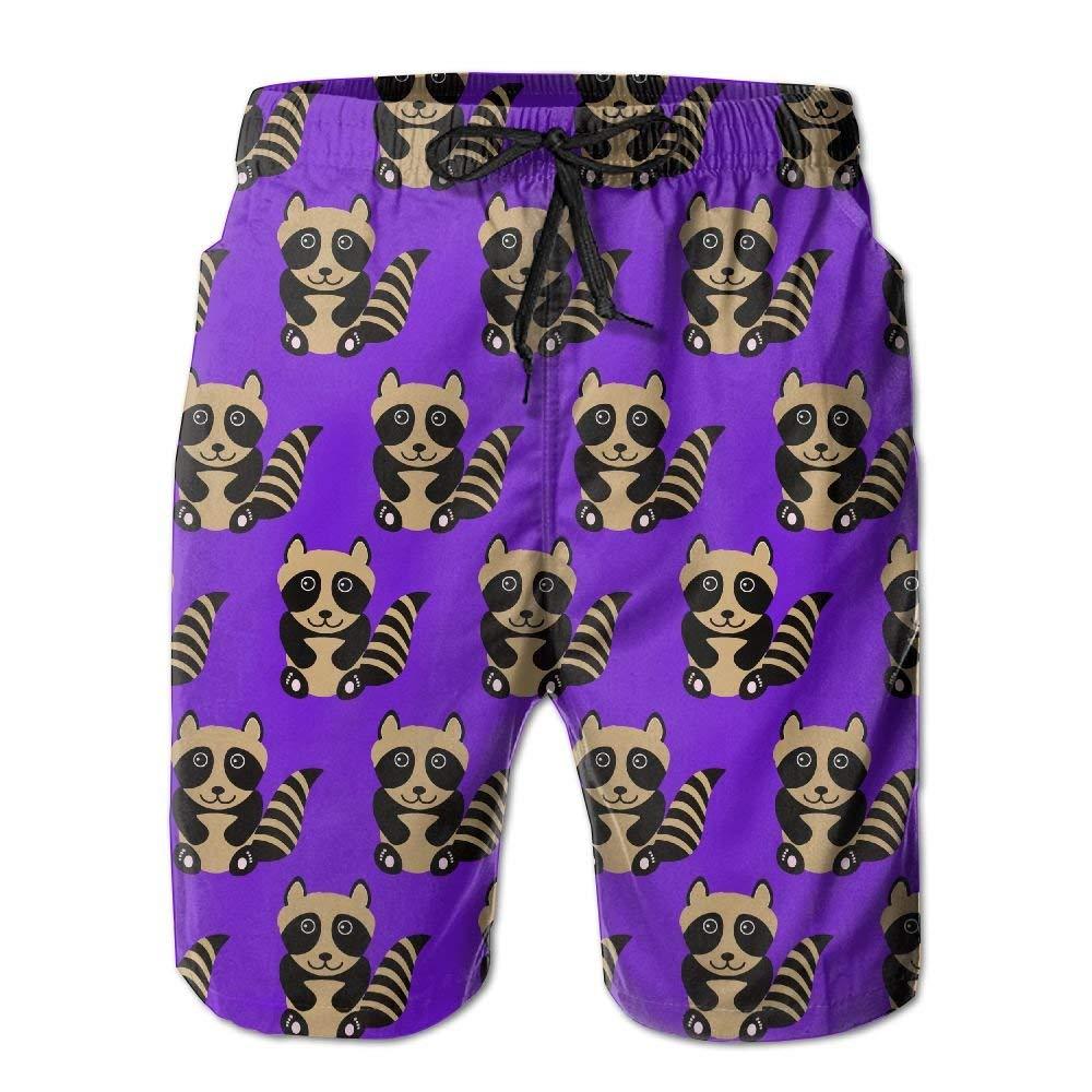 Mens Raccoon Animal Summer Holiday Swim Trunks Beach Shorts Board Shorts