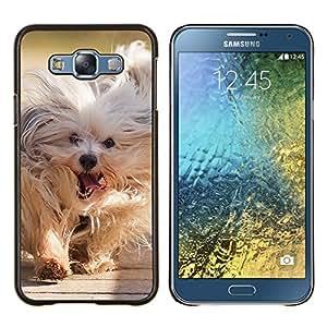TECHCASE---Cubierta de la caja de protección para la piel dura ** Samsung Galaxy E7 E700 ** --Husky siberiano perro de trineo polar Komandor