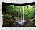 Ambesonne Natural Cave Tapestry, Still Waterfall in The Forest in Northern Alabama Habitat Ecosystem Scenery, Wide Wall Hanging for Bedroom Living Room Dorm, 80' X 60', Green Brown