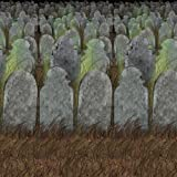 Beistle 00900 Graveyard Backdrop, 4' x 30'