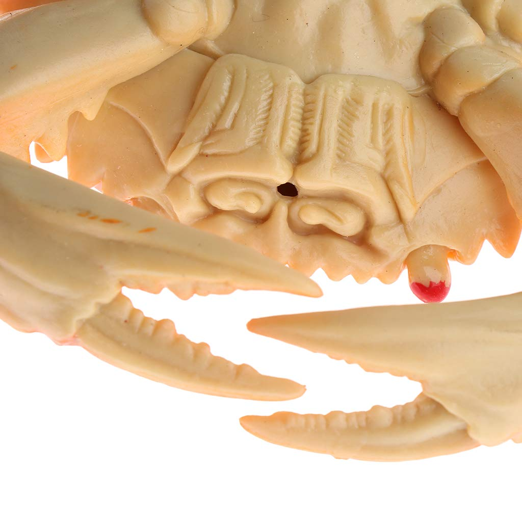 Market Display Ornaments Simulation Seafood Crab Artificial Fake Crab Kitchen Perfect for Home