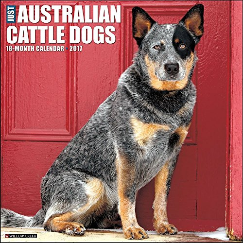 Australian Cattle Dogs 2017 Wall Calendar