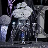 TCDesignerProducts Crystallina Candelabra Centerpiece Kit, 25 Inches High, Crystal Prisms and Hydrangea Prom Décor