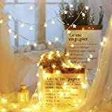 CITRA 30 Led 10M Frosted Star Copper String Fairy Light for Home,Office, Diwali, Eid & Christmas Decoration - Warm White