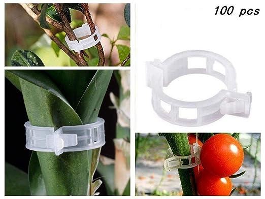 Acogedor Clips de Plantas, Clips de Soporte de Flores para Plantas ...