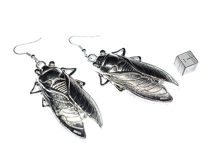 Zikaden Ohrringe Miniblings Kuchenschabe Grille Insekten Silber Xl
